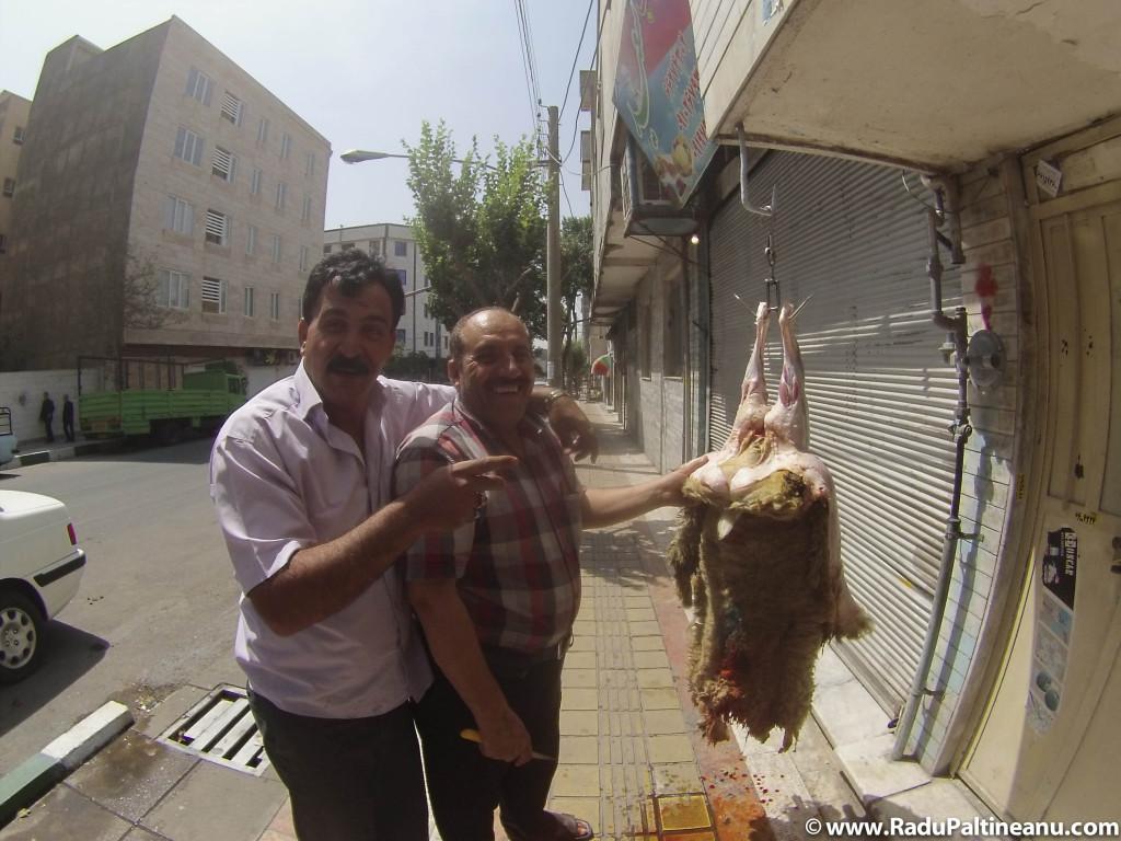 transarea mielului, Teheran